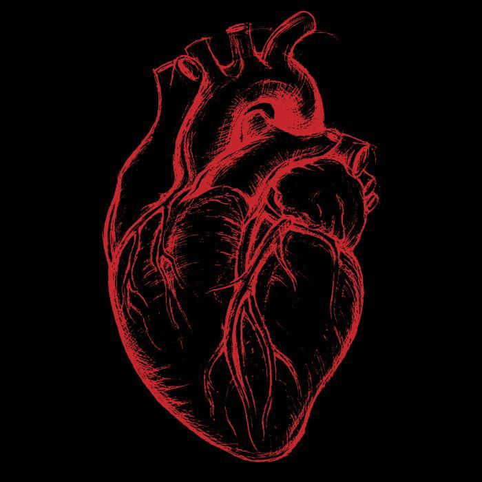 Cardiac Case Review