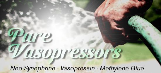 Pure Vasopressors